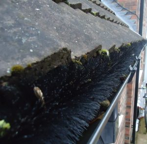 Prevent or Fix Blocked Gutters and Rainwater Systems Portsmouth